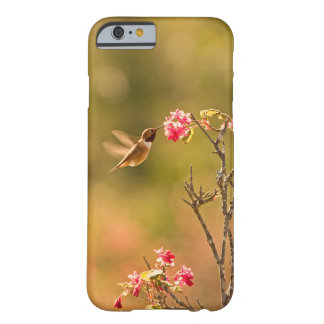 Colibri et fleurs roses coque iPhone 6 barely there