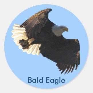 Collection II de vol d Eagle chauve Adhésif Rond