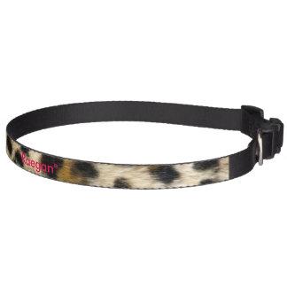 Collier de chien de guépard