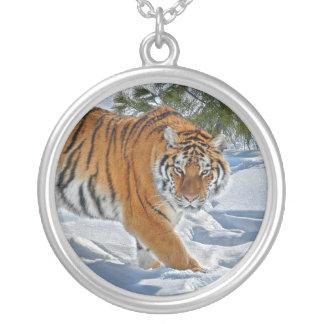 Collier d'ombre de neige de tigre