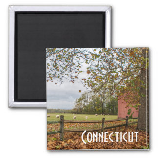 Connecticut-Fall-Bauernhof-Magnet Quadratischer Magnet