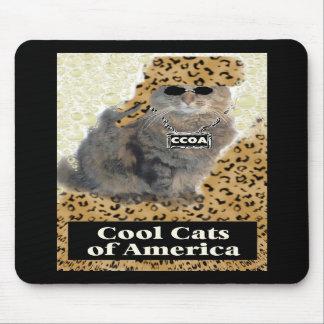 Coole Katzen von Amerika Mauspad