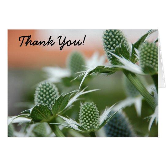 Coole Pflanze danken Ihnen zu kardieren Karte