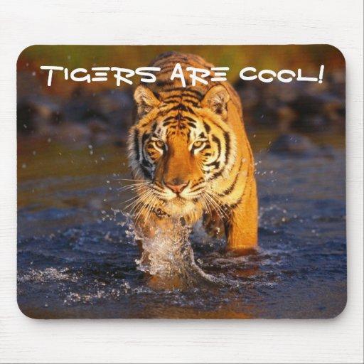 Cooler Tiger Mauspad