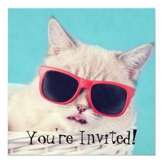 Cooles Katzen-Party lädt Aqua-Blau ein Quadratische 13,3 Cm Einladungskarte