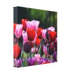 Copie de toile de tulipes toile tendue sur châssis