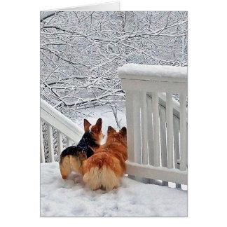Corgis im Schnee Mitteilungskarte