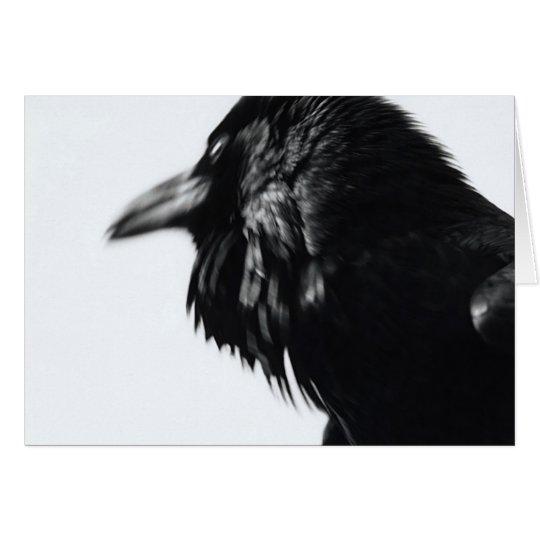 Corvus corax (allgemeiner Rabe) Karte