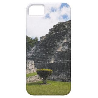 Costa-Maya Chacchoben Mayaruinen iPhone 5 Schutzhülle