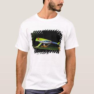 Costa Rica, Rot-mit Augen Baum-Frosch (Agalychnis T-Shirt