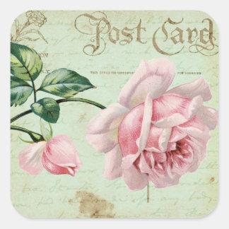 Cottage floral élégant de roses roses vintages sticker carré