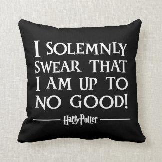 Coussin Charme | de Harry Potter que je jure
