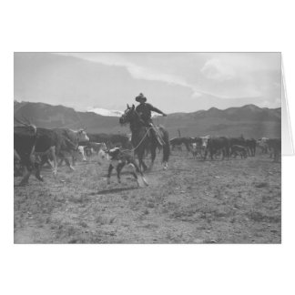 Cowboy, der ein Kalb für das Frühlingseinbrennen Karte