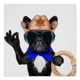 Cowboy-Mops - Hundecowboy Poster