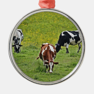Cows_0068 Silbernes Ornament