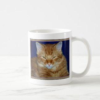 Cranky orange Maine-Waschbär-Kaffee-Tasse Kaffeetasse