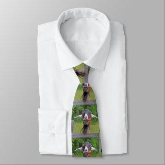 Cravate drôle de chèvre