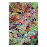 croton_plant_painting posters
