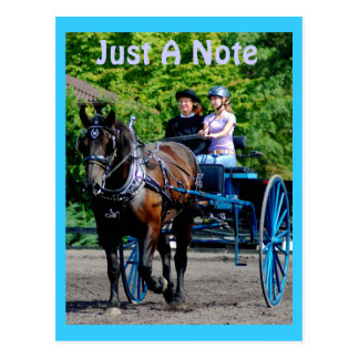 culpeper VA Entwurfspferdeshow Postkarte