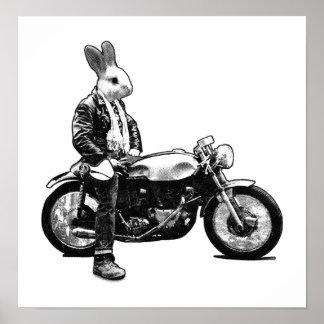 Cycliste de lapin poster