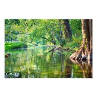 Cypress- CreekAbend Fotodruck