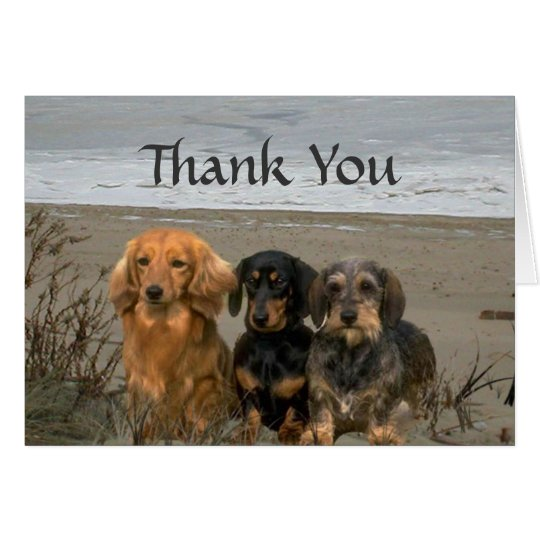 Dackel danken Ihnen, Strand zu kardieren Grußkarte