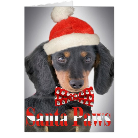 Dackel-Weihnachtstatzenkarte Karte