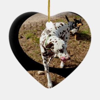 Dalmatiner, der aus Fenster-Rahmen heraus tritt, Keramik Ornament