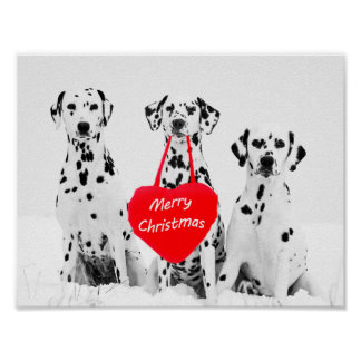 Dalmatiner, die Plakat der frohen Weihnachten