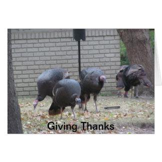 Dankbarkeit auf Erntedank Grußkarte