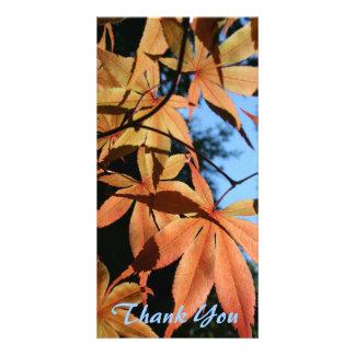 Danke (3) - japanischer Ahorn (2) - Fotokarte