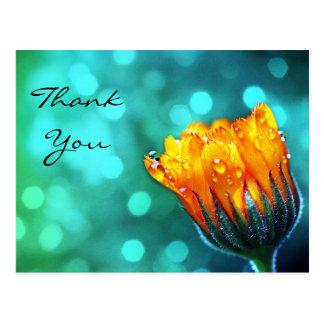 Danke, goldene Ringelblume auf aquamarinem Bokeh Postkarte