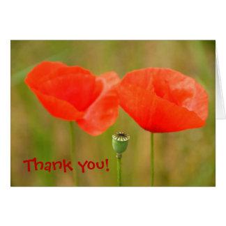 Danke! Helle rote Mohnblumen Grußkarte