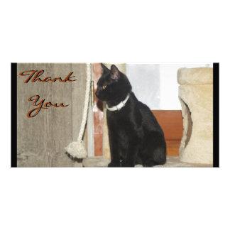 Danke Kätzchen-Fotokarten