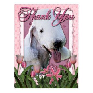 Danke - rosa Tulpen - Bedlington Terrier Postkarte