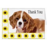 Danke Sonnenblume-unbekümmerter Königcharles Grußkarten