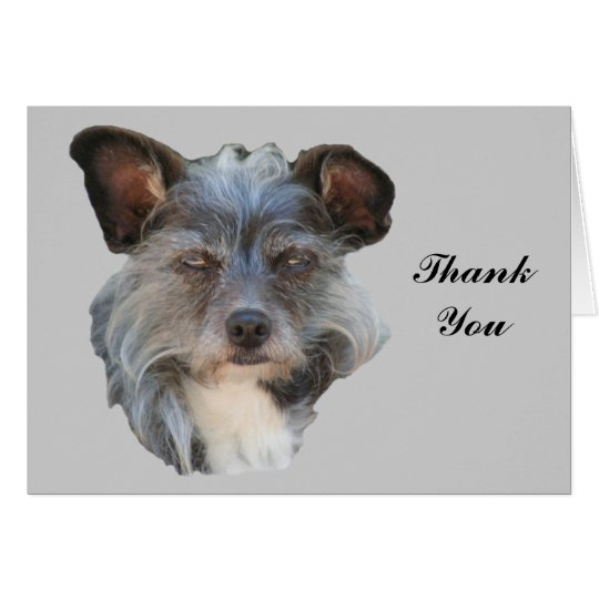 Danken niedlicher Köter-Terrier gemischter Mitteilungskarte