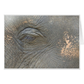 Das Auge des Elefanten Karte