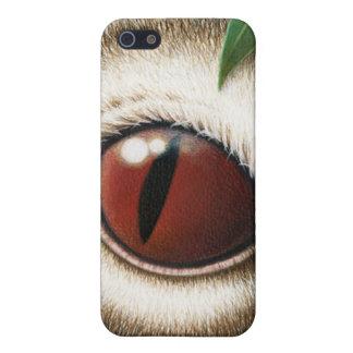 Das Auge des Koala iPhone 5 Schutzhüllen