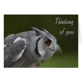 Das Denken an Sie kardieren - Baby-Grau-Eule Karte