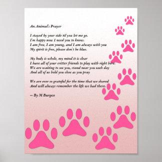 Das Gebet eines Tieres - rosa Tatzen - Poster