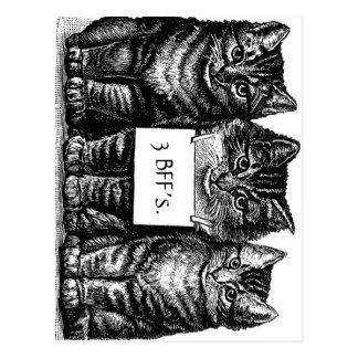 Das Kätzchen-Postkarte drei bester Freundin Postkarte