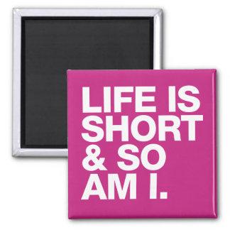 Das Leben ist kurz u. also ist ich lustiges Zitat Quadratischer Magnet