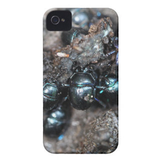 Das Mistkäfer Anoplotrupes stercorosus iPhone 4 Case-Mate Hülle
