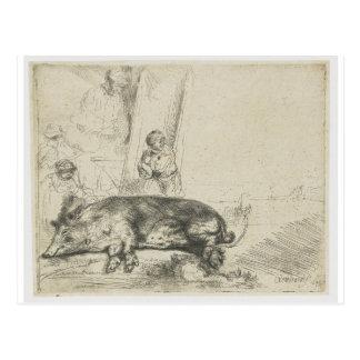 Das Schwein durch Rembrandt Postkarte