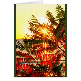 Das Senden des warmen Weihnachten wünscht Ihre Karte