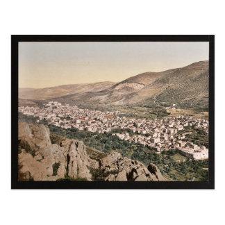 Das Tal von Napulus, (d.h., Nablus), Heiliges Land Postkarte