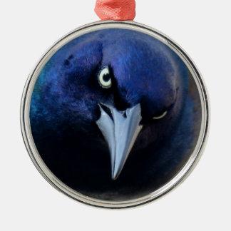 Das verärgerte Grackle Rundes Silberfarbenes Ornament
