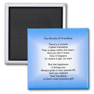 Das Wunder des Freundschaftsmagneten Quadratischer Magnet