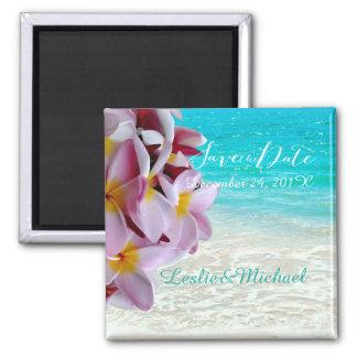 Date d'économies de PixDezines/plumeria rose/plage Magnet Carré